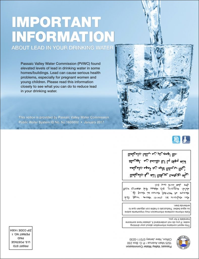 front page of lead pdf